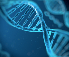 Stem Cell Transplantation in Lymphoma - Lymphoma Research Foundation