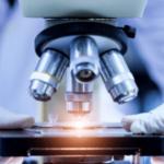 Meet the 2021 Lymphoma Scientific Research Mentoring Program Scholars